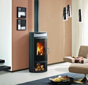 Edilkamin wood stove